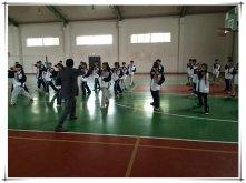 林城中学:拳传相承 义举一代