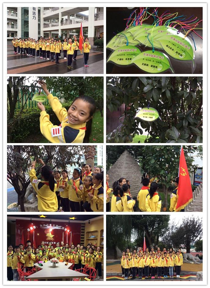 秋滨小学有一群可爱的环保娃