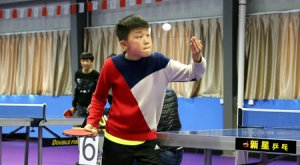 乒乓小将,赛场争霸——浦江县举行第十六届运
