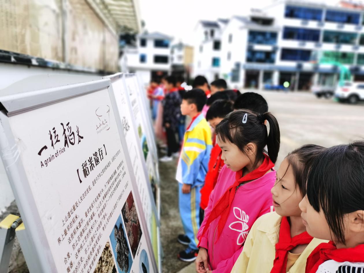 爱上浦江,从了解上山文化开始